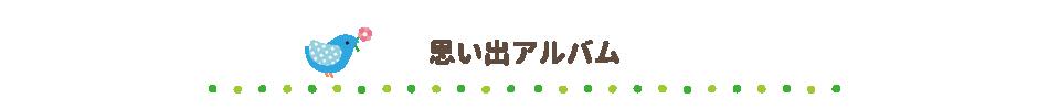 ぱんちゃん思い出アルバム